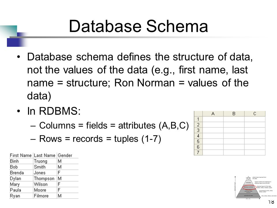 18 Database Schema Database schema defines the structure of data, not the values of the data (e.g., first name, last name = structure; Ron Norman = values of the data) In RDBMS: –Columns = fields = attributes (A,B,C) –Rows = records = tuples (1-7)