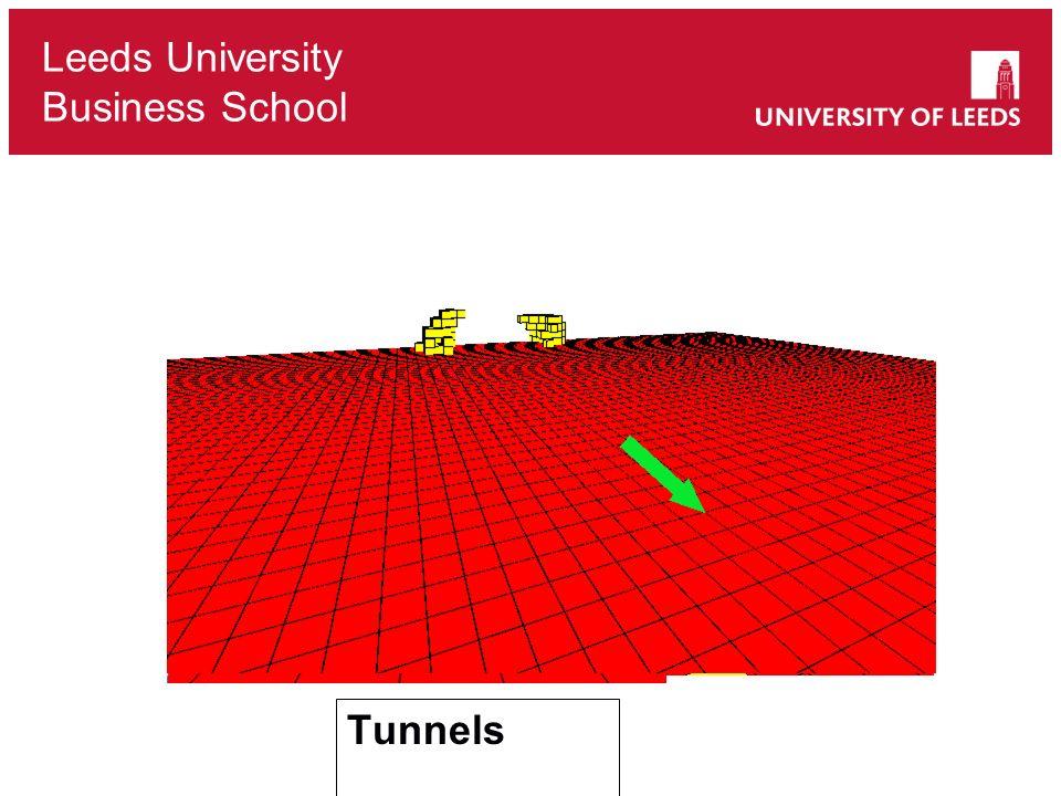 Leeds University Business School Tunnels