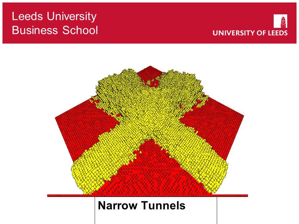 Leeds University Business School Narrow Tunnels