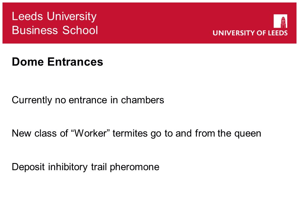 Leeds University Business School Dome Entrances Currently no entrance in chambers New class of Worker termites go to and from the queen Deposit inhibitory trail pheromone
