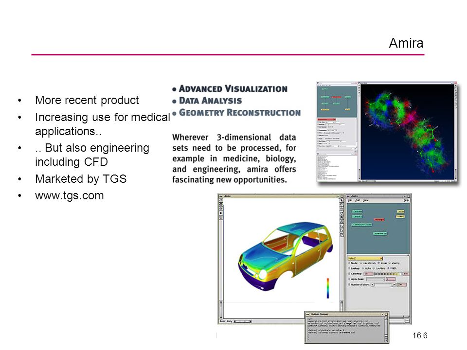ENV 200616.6 Amira More recent product Increasing use for medical applications.... But also engineering including CFD Marketed by TGS www.tgs.com