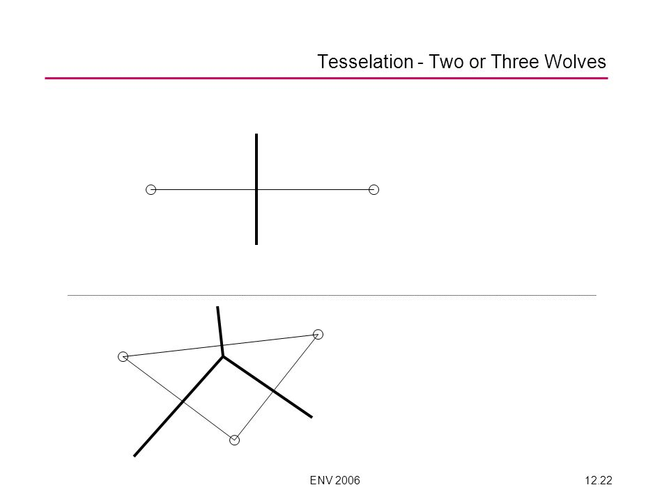 ENV 200612.21 Tesselation – Two or three wolves