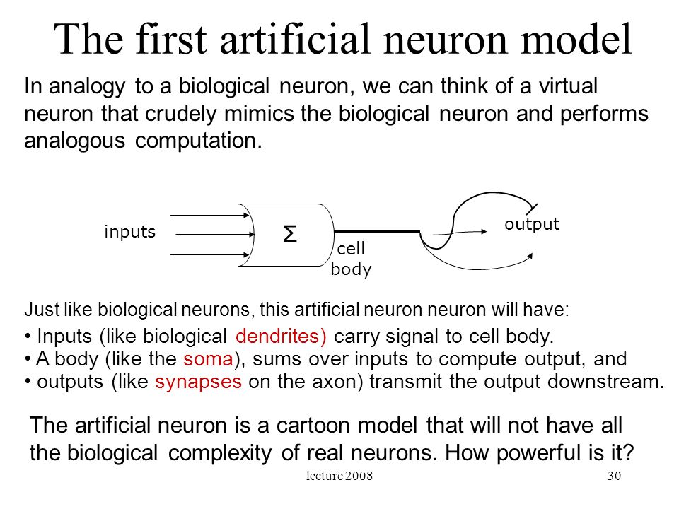 lecture 200830 The first artificial neuron model In analogy to a biological neuron, we can think of a virtual neuron that crudely mimics the biologica