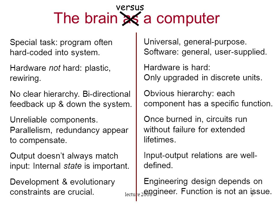lecture 200826 How do the neural networks form in the brain.