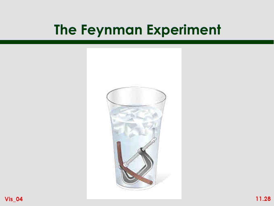 11.28 Vis_04 The Feynman Experiment
