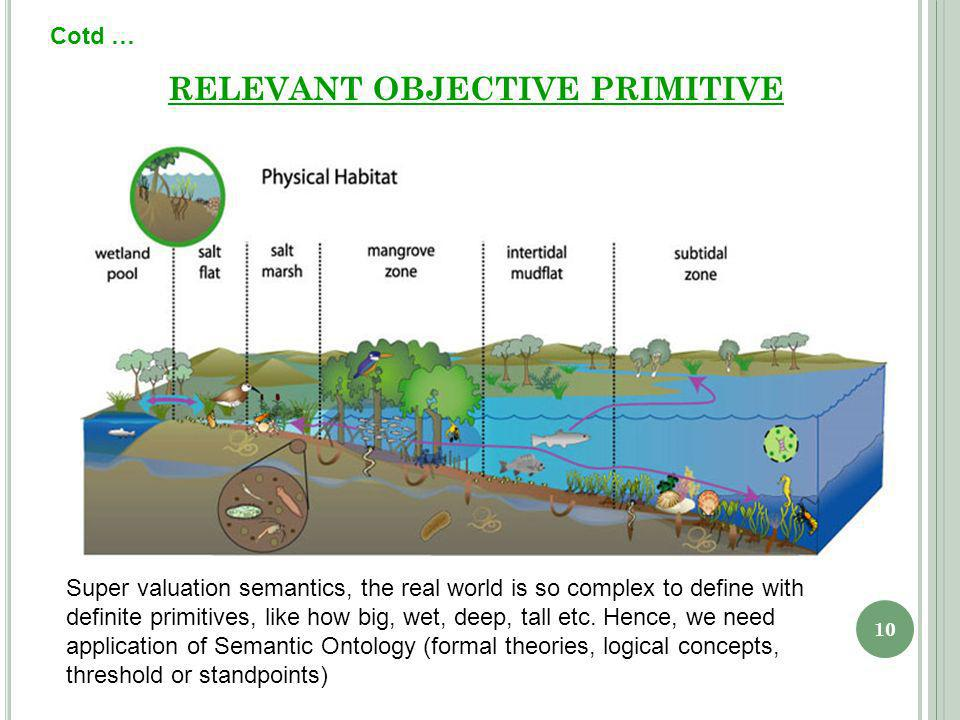 10 RELEVANT OBJECTIVE PRIMITIVE Cotd … Super valuation semantics, the real world is so complex to define with definite primitives, like how big, wet, deep, tall etc.
