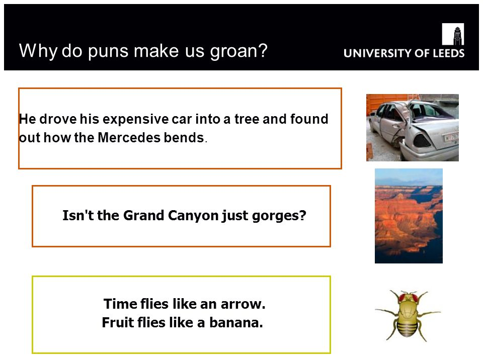Why do puns make us groan? He drove his expensive car into a tree and found out how the Mercedes bends. Isn't the Grand Canyon just gorges? Time flies
