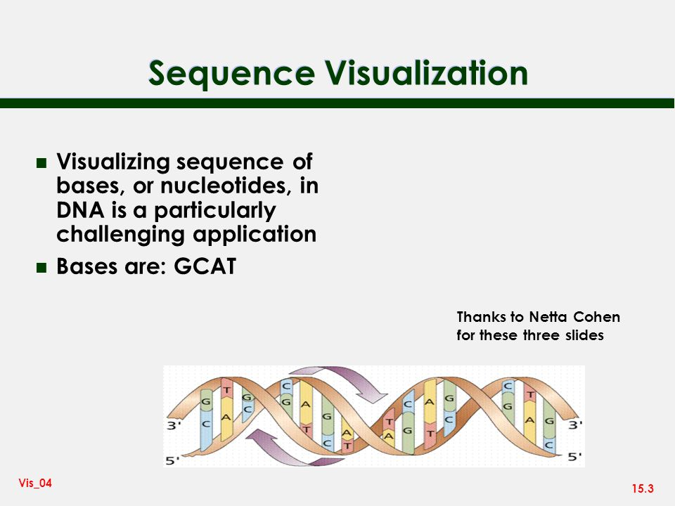 15.3 Vis_04 Sequence Visualization n Visualizing sequence of bases, or nucleotides, in DNA is a particularly challenging application n Bases are: GCAT Thanks to Netta Cohen for these three slides