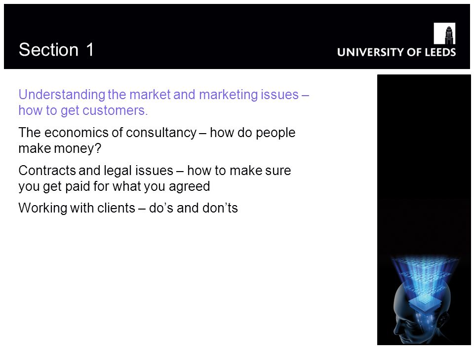 Section 1 Understanding the market and marketing issues – how to get customers. The economics of consultancy – how do people make money? Contracts and