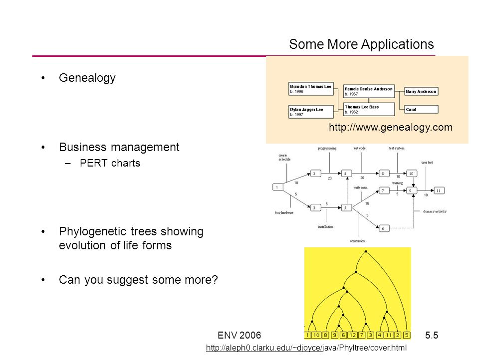 ENV 20065.5 Some More Applications Genealogy Business management –PERT charts Phylogenetic trees showing evolution of life forms Can you suggest some