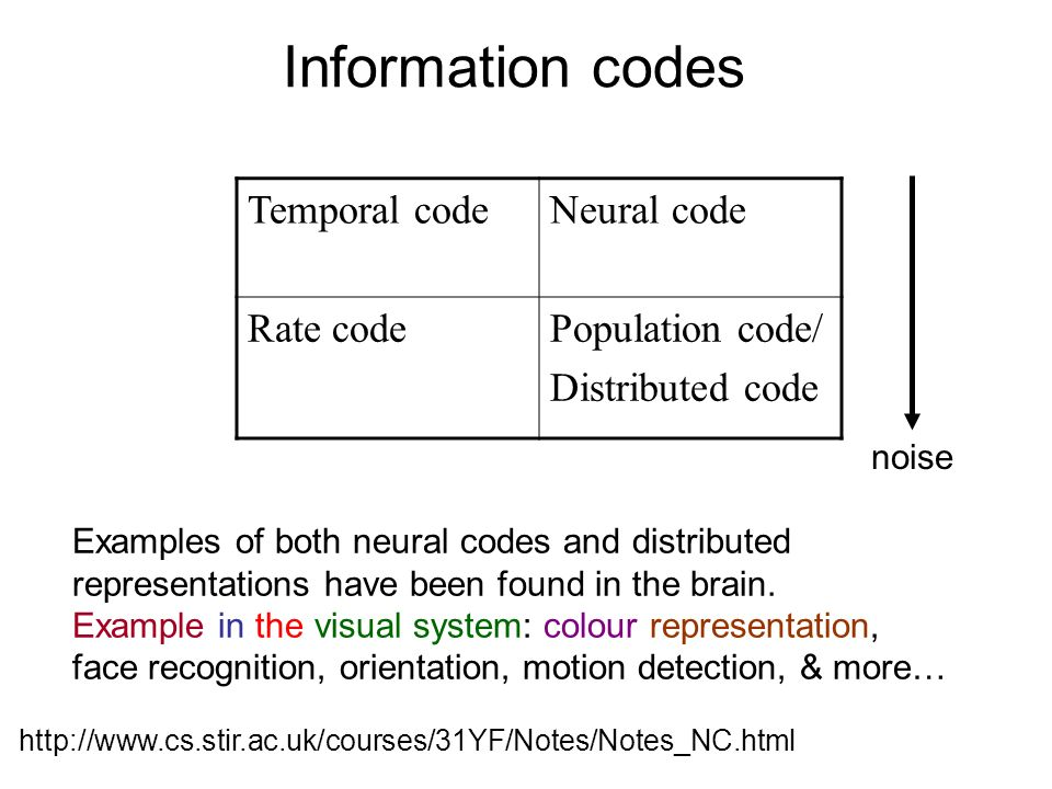 Examples of both neural codes and distributed representations have been found in the brain. Example in the visual system: colour representation, face