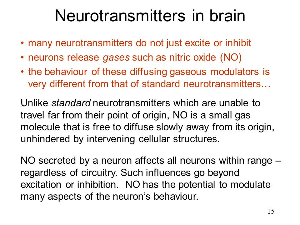 15 Neurotransmitters in brain Unlike standard neurotransmitters which are unable to travel far from their point of origin, NO is a small gas molecule