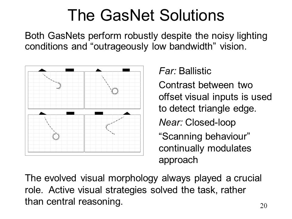 20 The GasNet Solutions Both GasNets perform robustly despite the noisy lighting conditions and outrageously low bandwidth vision. The evolved visual