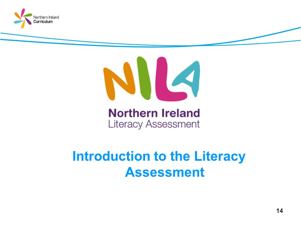 Introduction to the Literacy Assessment 14