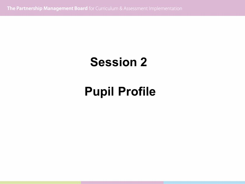 Session 2 Pupil Profile
