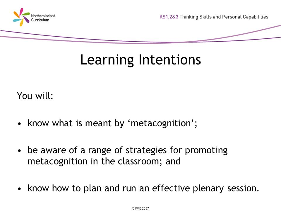 © PMB 2007 Learning Intentions You will: know what is meant by metacognition; be aware of a range of strategies for promoting metacognition in the classroom; and know how to plan and run an effective plenary session.