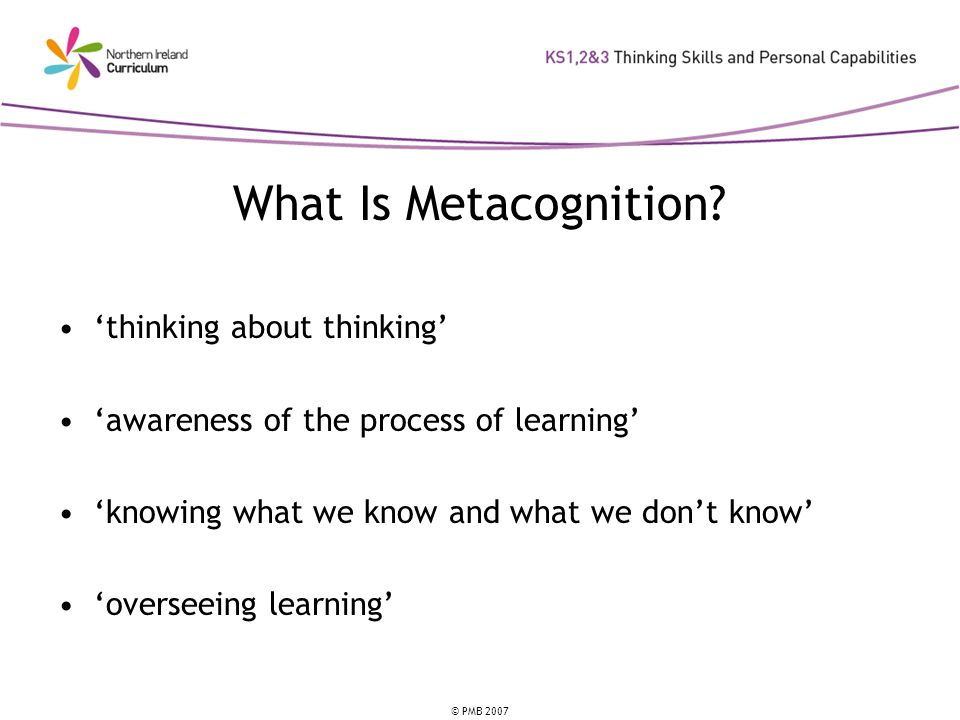 © PMB 2007 What Is Metacognition.
