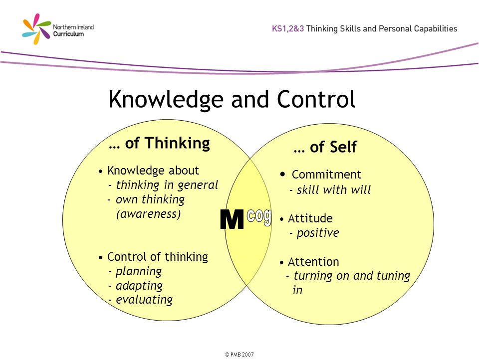 © PMB 2007 Knowledge and Control … of Thinking Knowledge about - thinking in general -own thinking (awareness) Control of thinking - planning - adapting - evaluating … of Self Commitment - skill with will Attitude - positive Attention - turning on and tuning in