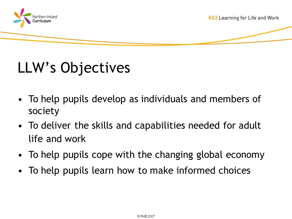 © PMB 2007 To help pupils develop as individuals and members of society To deliver the skills and capabilities needed for adult life and work To help pupils cope with the changing global economy To help pupils learn how to make informed choices LLWs Objectives