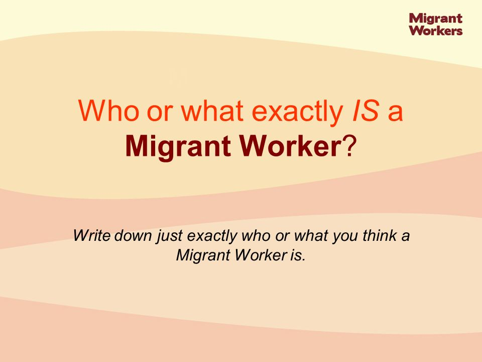 In Northern Ireland migrant workers mostly fill gaps in the academic, agricultural, food production, health, hospitality and catering sectors.
