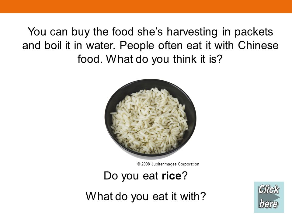 You can buy the food shes harvesting in packets and boil it in water.