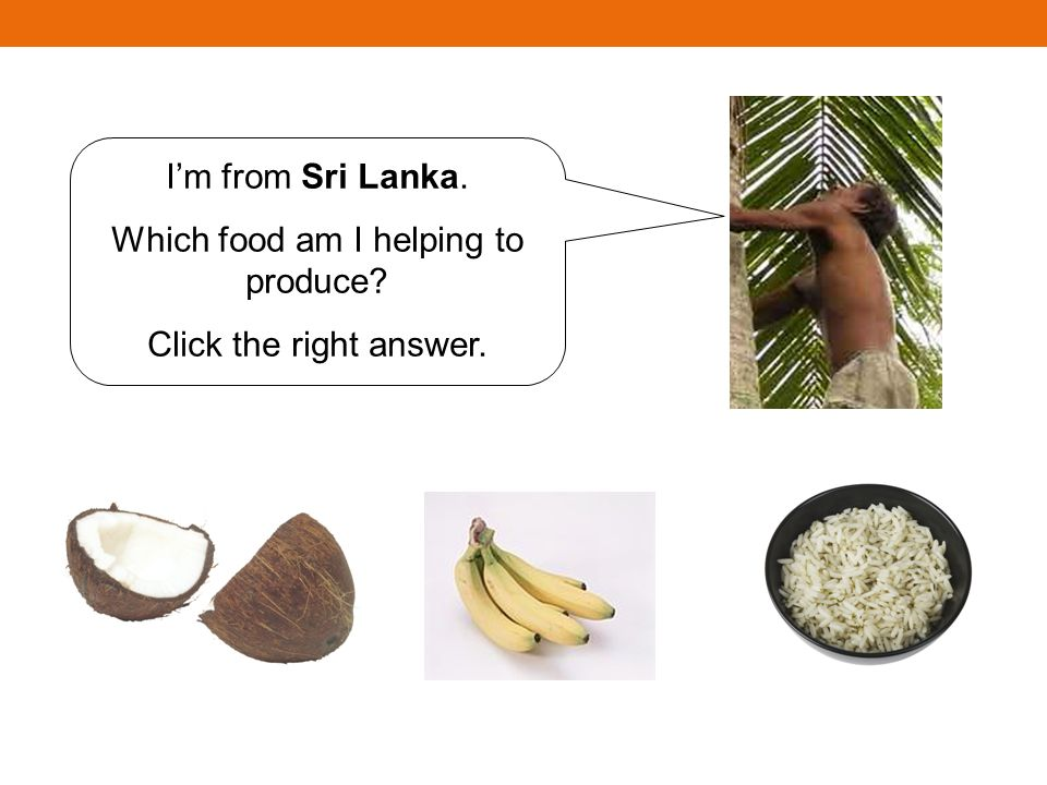 Im from Sri Lanka. Which food am I helping to produce? Click the right answer.