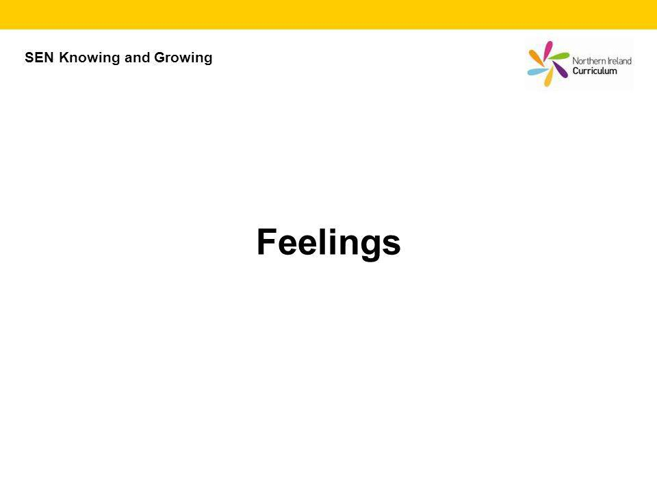 SEN Knowing and Growing Feelings