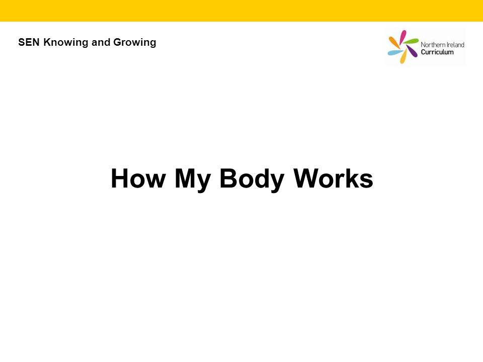 How My Body Works SEN Knowing and Growing