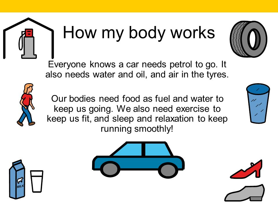 How my body works Everyone knows a car needs petrol to go.