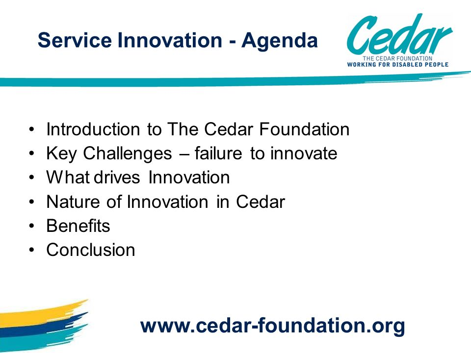 Introduction to The Cedar Foundation Key Challenges – failure to innovate What drives Innovation Nature of Innovation in Cedar Benefits Conclusion www