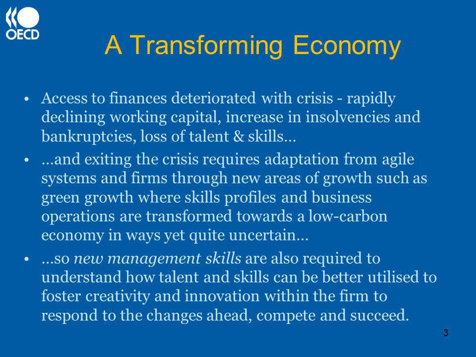 A Transforming Economy Access to finances deteriorated with crisis - rapidly declining working capital, increase in insolvencies and bankruptcies, loss of talent & skills… …and exiting the crisis requires adaptation from agile systems and firms through new areas of growth such as green growth where skills profiles and business operations are transformed towards a low-carbon economy in ways yet quite uncertain… …so new management skills are also required to understand how talent and skills can be better utilised to foster creativity and innovation within the firm to respond to the changes ahead, compete and succeed.