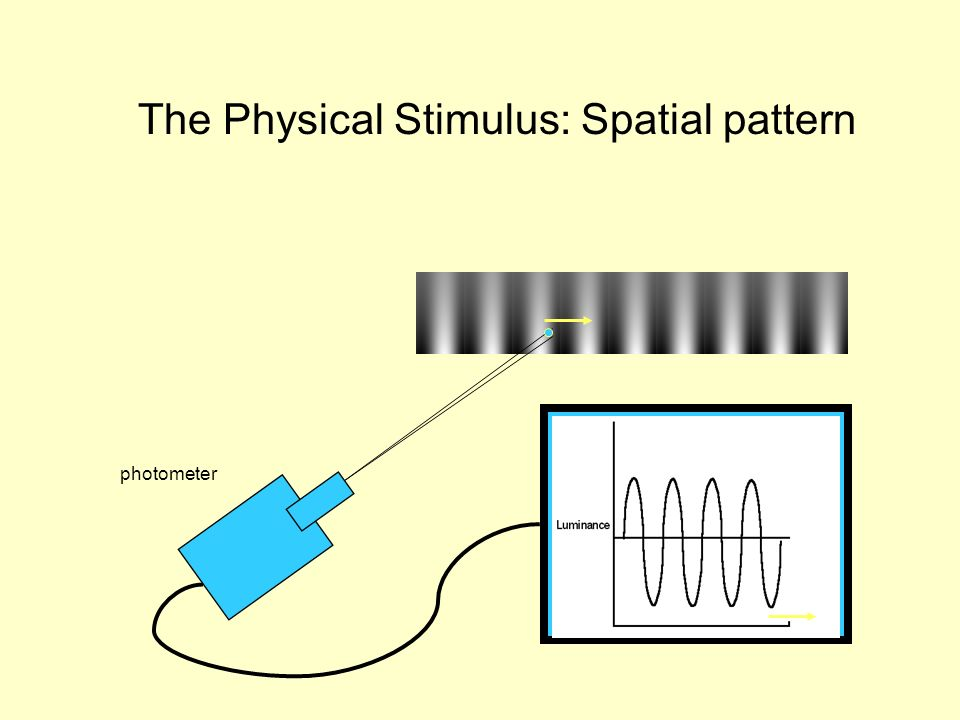 photometer The Physical Stimulus: Spatial pattern