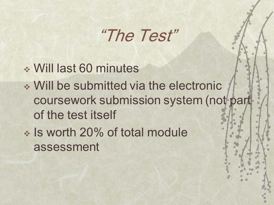 The Test Will last 60 minutes Will be submitted via the electronic coursework submission system (not part of the test itself Is worth 20% of total mod