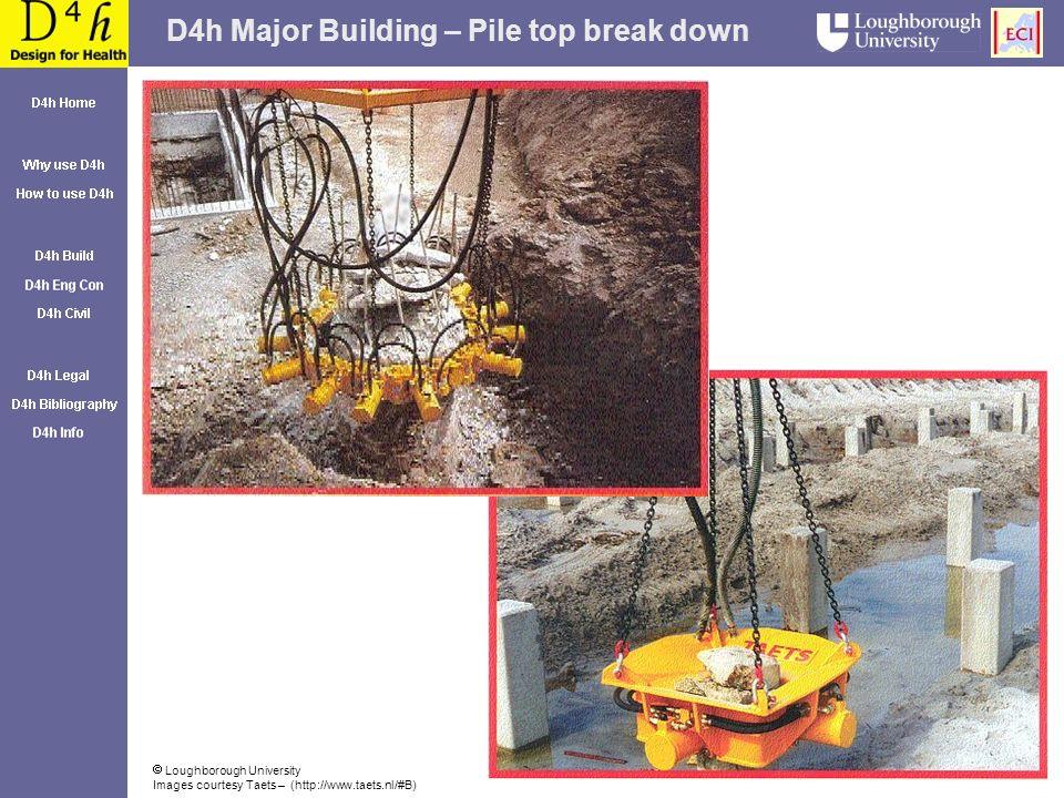 D4h Major Building – Pile top break down Loughborough University Images courtesy Taets – (http://www.taets.nl/#B)