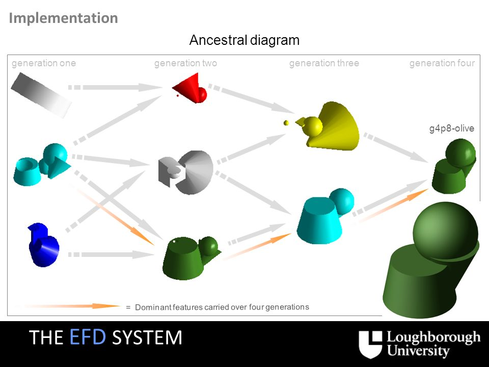 Implementation = Dominant features carried over four generations generation onegeneration twogeneration threegeneration four g4p8-olive Ancestral diagram THE EFD SYSTEM