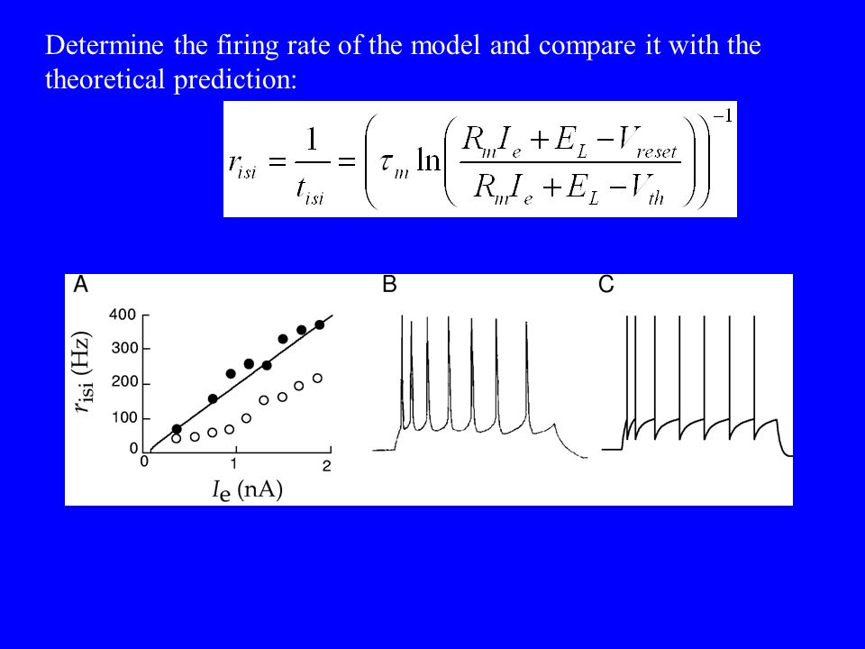 Determine the firing rate of the model and compare it with the theoretical prediction:
