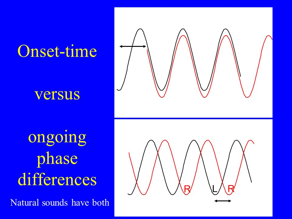 Response Interaural Time Difference 0 Left Ear Right Ear From David McAlpine
