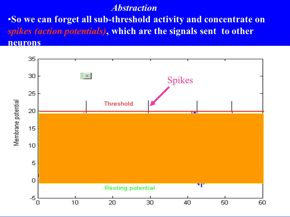 Abstraction So we can forget all sub-threshold activity and concentrate on spikes (action potentials), which are the signals sent to other neurons Spi
