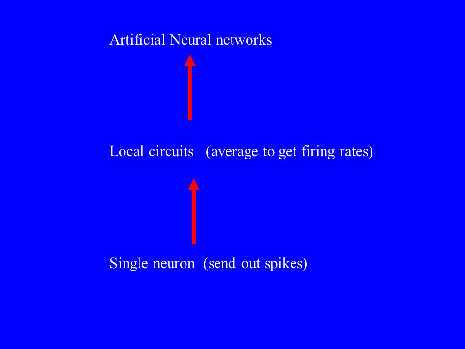 Artificial Neural networks Local circuits (average to get firing rates) Single neuron (send out spikes)