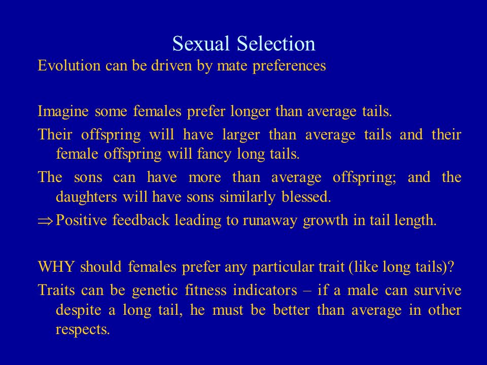 Sexual Selection Evolution can be driven by mate preferences Imagine some females prefer longer than average tails. Their offspring will have larger t