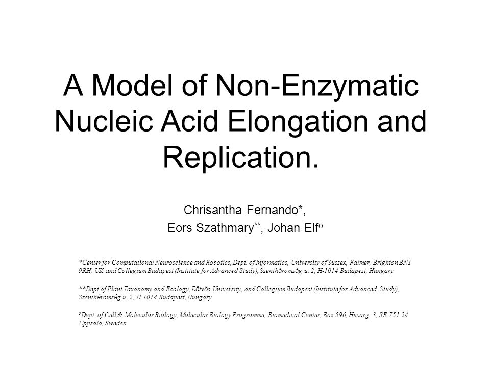 A Model of Non-Enzymatic Nucleic Acid Elongation and Replication.