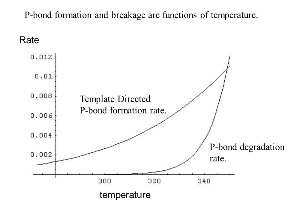 Template Directed P-bond formation rate. P-bond degradation rate.