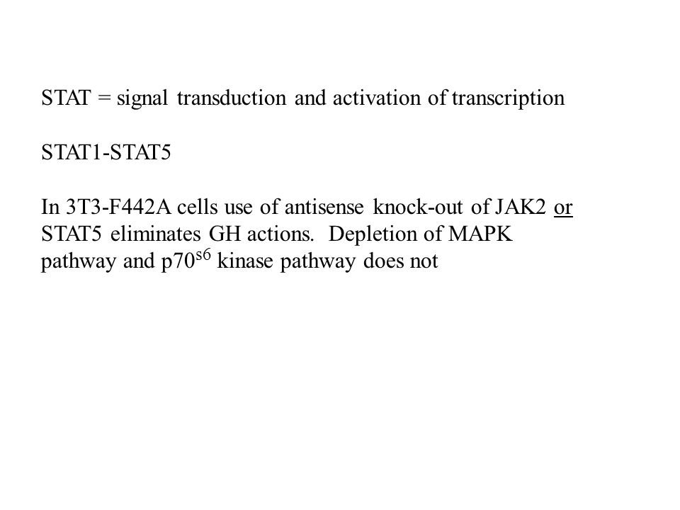 STAT = signal transduction and activation of transcription STAT1-STAT5 In 3T3-F442A cells use of antisense knock-out of JAK2 or STAT5 eliminates GH actions.