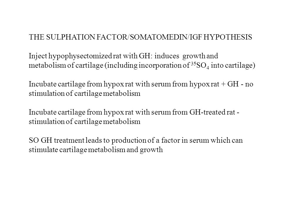 THE SULPHATION FACTOR/SOMATOMEDIN/IGF HYPOTHESIS Inject hypophysectomized rat with GH: induces growth and metabolism of cartilage (including incorporation of 35 SO 4 into cartilage) Incubate cartilage from hypox rat with serum from hypox rat + GH - no stimulation of cartilage metabolism Incubate cartilage from hypox rat with serum from GH-treated rat - stimulation of cartilage metabolism SO GH treatment leads to production of a factor in serum which can stimulate cartilage metabolism and growth