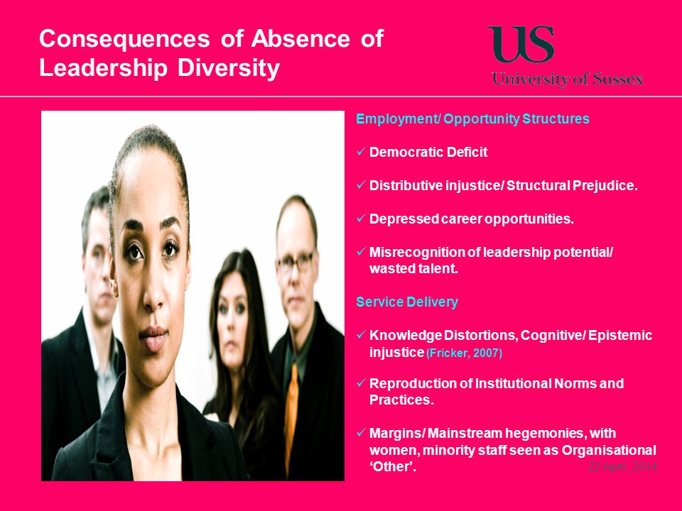 22 April, 2014 Consequences of Absence of Leadership Diversity Employment/ Opportunity Structures Democratic Deficit Distributive injustice/ Structura