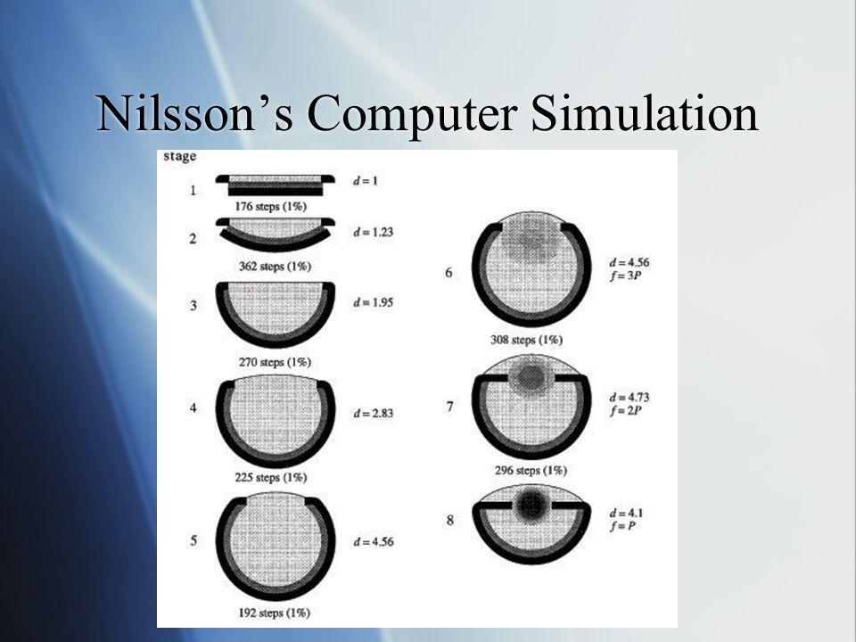 Nilssons Computer Simulation