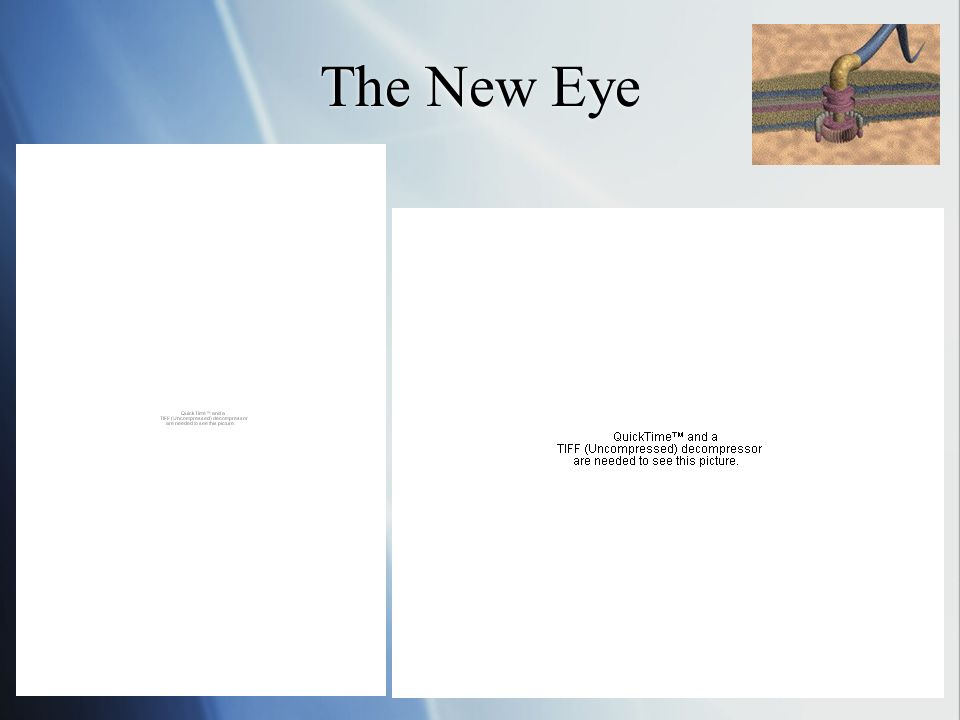 The New Eye