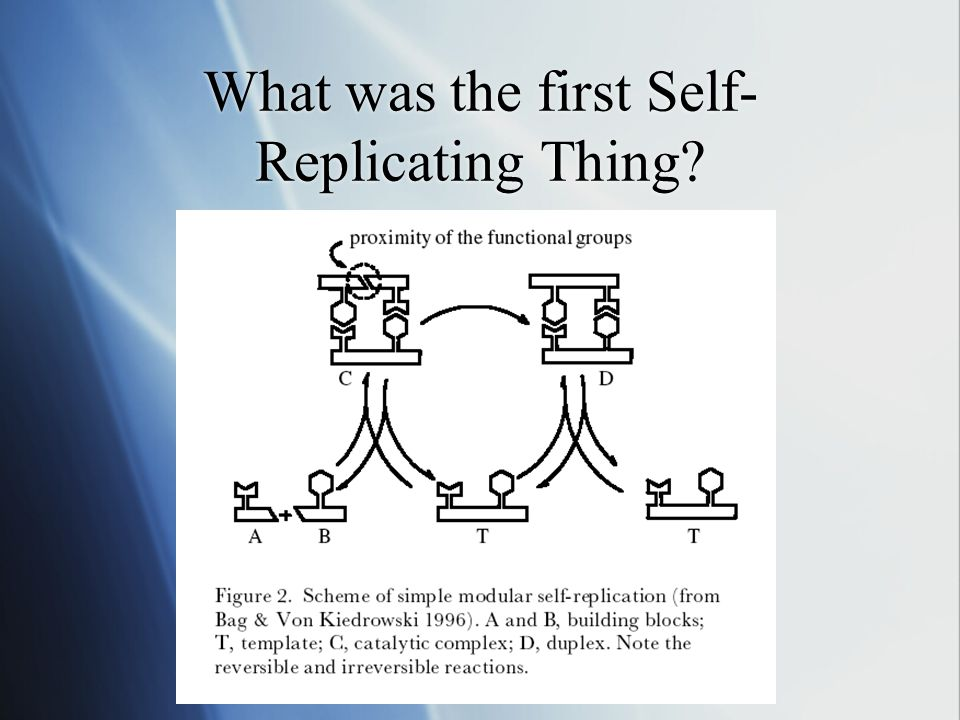 What was the first Self- Replicating Thing?