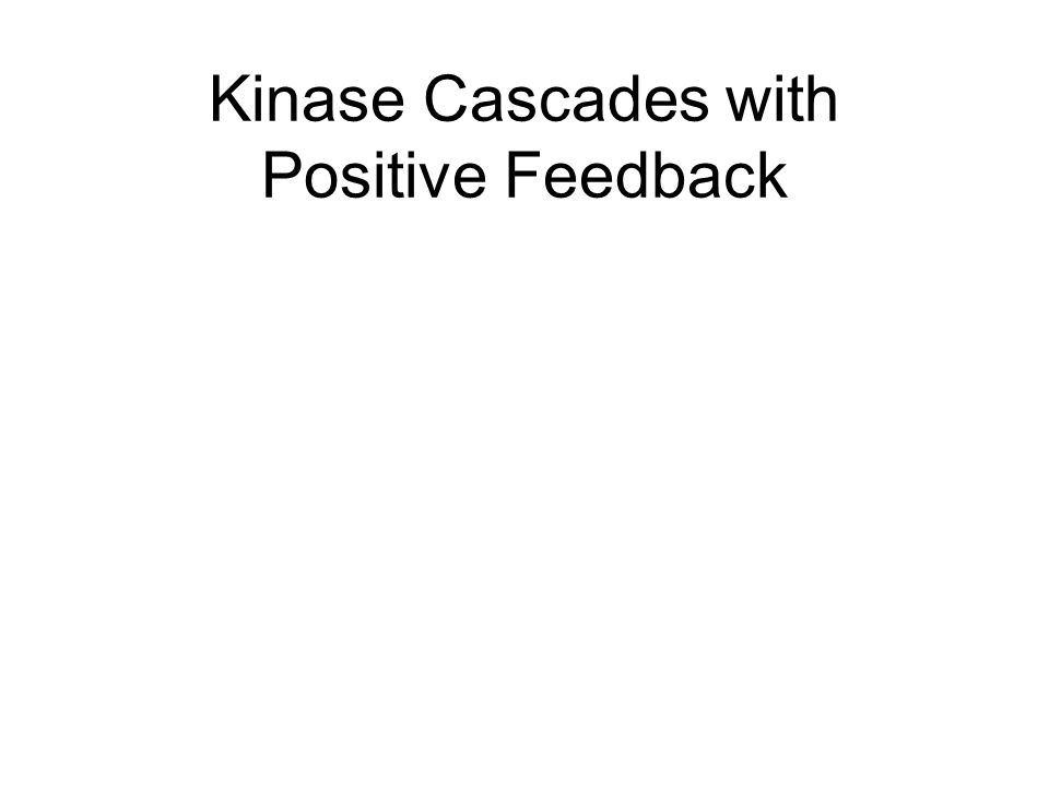 Kinase Cascades with Positive Feedback