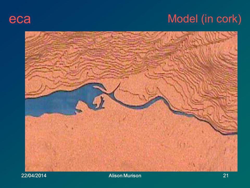 eca 22/04/2014Alison Murison21 Model (in cork)